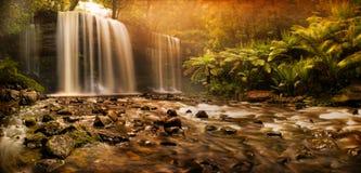 Russell Falls waterfall Stock Photo