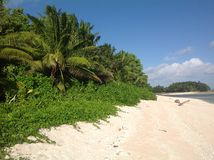 A sandy beach on the tropical island of Fiji in the South Pacific Royalty Free Stock Photography