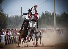 Sardinia. Hazard on horseback Stock Photography