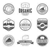 Satz Vektor-Käse-Aufkleber, Ikonen und Gestaltungselemente Lizenzfreies Stockbild