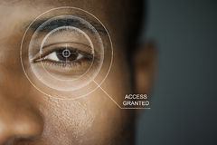 Scan security Royalty Free Stock Image
