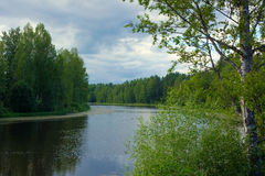 Scenic forest and river Stock Photos