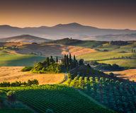 Scenic Tuscany landscape at sunrise, Val dOrcia, Italy Stock Photo