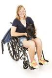 scotty残疾狗的女孩 免版税库存照片