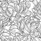 Seamless bw pattern with chrysanthemum Stock Photography