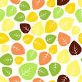 Seamless leaves pattern Royalty Free Stock Photos