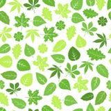 Seamless leaves pattern Stock Photo