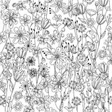 Seamless pattern with contour black-and-white Stock Image