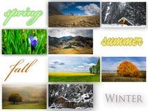 Season collage Royalty Free Stock Photos