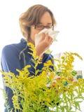 Seasonal Allergies Royalty Free Stock Photos