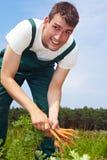 Seasonal farm labourer Royalty Free Stock Photography