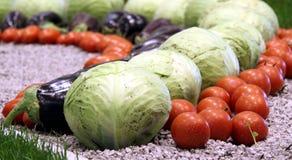 Seasonal vegetables Royalty Free Stock Photography