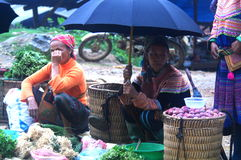 Seller at Can Cau Market, Y Ty, Vietnam Royalty Free Stock Photo