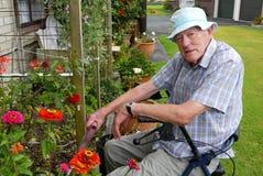 Senior man: gardening Stock Image