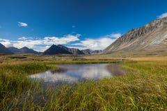Serenity lake in tundra on Alaska Stock Photography