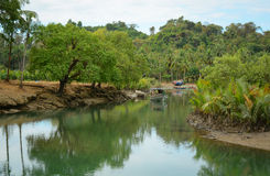 Serenity river in Vietnam Royalty Free Stock Images
