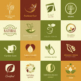 Set of icons and symbols for nature health and org Stock Photo