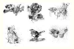 Set of six artistic bird, flower and butterflies Royalty Free Stock Photos