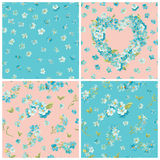Set of Spring Blossom Flowers Backgrounds Stock Photography