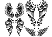 Set of Wings Stock Image
