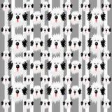 Shaggy dog pattern Stock Photo