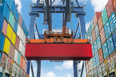 Shore crane lifts container during cargo operation in port Royalty Free Stock Image