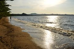 Shore of Lake Victoria Stock Images