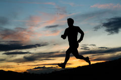 Silhouette of a jogger in sunrise Royalty Free Stock Photography