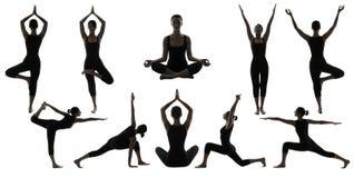 Silhouette Yoga Poses on White, Woman Asana Position Exercise Stock Images