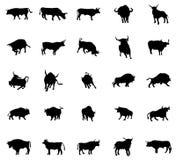Siluetas de Bull fijadas Imagen de archivo libre de regalías