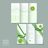Simplicity tri-fold brochure template design Stock Images