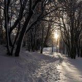 Slinga till och med snö Arkivbild