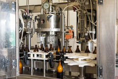 Small beer bottle filling machine Stock Image