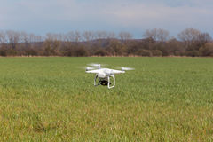 Small drone above the field Stock Image