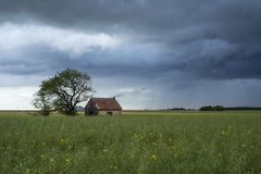 Small house in the field Royalty Free Stock Photos