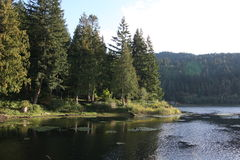 Small Lake in the Northwest Stock Photography