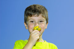 Smell The Flowers Royalty Free Stock Photos