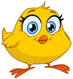 Smiling chick Stock Images