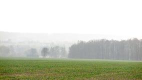 Smog landscape Royalty Free Stock Images