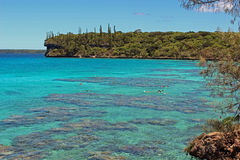 Snorkelling lagune in Lifou island, New Caledonia, South Pacific Stock Photography
