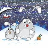 Snowy night Royalty Free Stock Photo