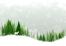 Snowy winter forest background Royalty Free Stock Photos