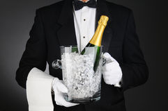 Sommelier with Champagne Ice Bucket Stock Image