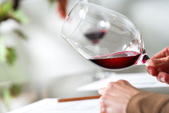Sommelier evaluating wine at tasting. Royalty Free Stock Photo
