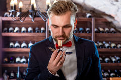 Sommelier in the wine cellar Stock Images