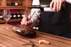 Sommelier at work. Stock Image