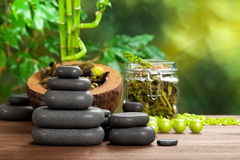 Spa stones and plants Royalty Free Stock Photography
