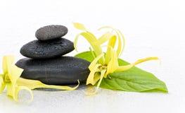 Spa stones and Ylang-Ylang flower Stock Photos