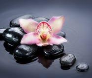 Spa Zen Stones Stock Image