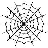 Spider web on white. Stock Photo